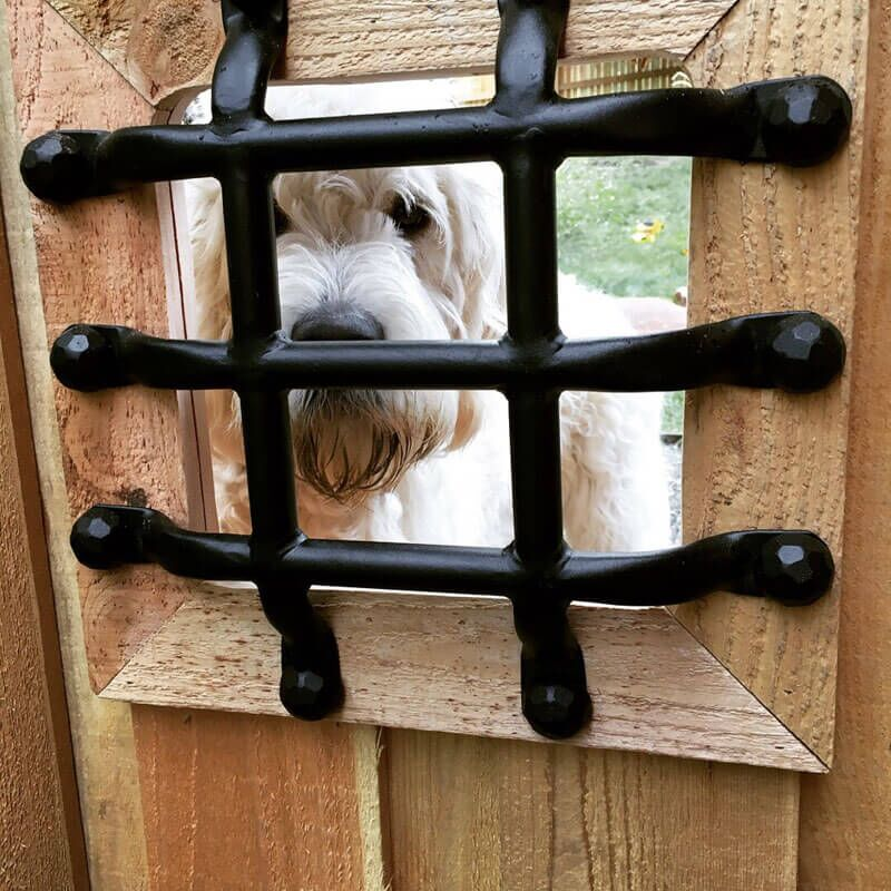 DIY Outdoor Doghouse: Building a Rustic Retreat for Rover